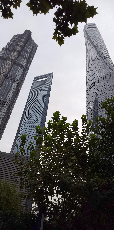 DSC_0174(上海高層ビル3棟と緑).JPG